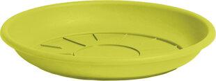 NICOLI lėkštelė Domus pistacijos spalvos kaina ir informacija | Lėkštelės ir priedai | pigu.lt