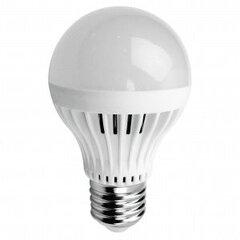 Šviesos diodų lempa ORRO, burbulas, 5W, E27 kaina ir informacija | Elektros lemputės | pigu.lt