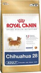 Royal Canin Chihuahua Adult 0,5 kg