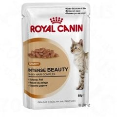 Royal Canin Intense Beauty in Gravy Pouch 12x85 g