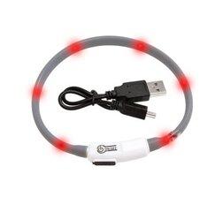 Šviečiantis antkaklis Visio Light LED, 20-35 cm, pilkas kaina ir informacija | Pavadėliai, antkakliai, petnešos šunims | pigu.lt