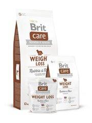 Brit Care turintiems viršsvorį šunims, su triušiena ir ryžiais, 12 kg kaina ir informacija | Brit Care turintiems viršsvorį šunims, su triušiena ir ryžiais, 12 kg | pigu.lt