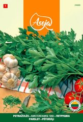 Петрушка /Parsley/ Amsterdamse snu, ASEJA, 3 г, 24600 (1)